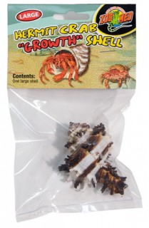 寄居蟹殼-L