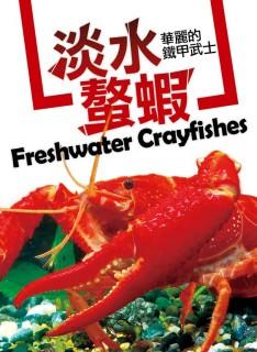 華麗的鐵甲武士-淡水螯蝦