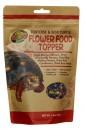 陸龜 天然花卉食物